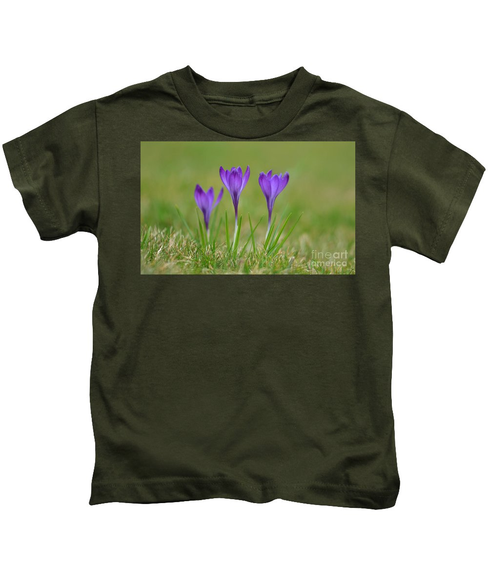 Trio Kids T-Shirt featuring the photograph Trio In Violet by Jaroslaw Blaminsky
