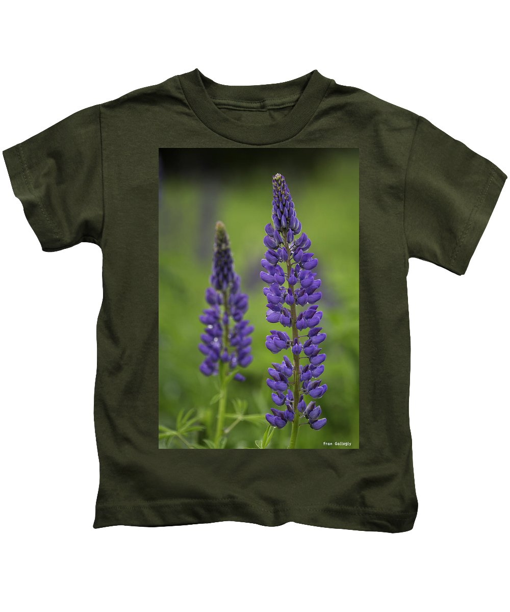 Lupine Kids T-Shirt featuring the photograph Two Lupine by Fran Gallogly