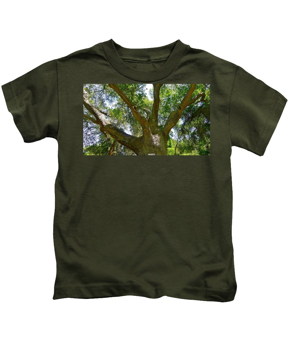 Tree Kids T-Shirt featuring the photograph Up In The Trees by Denise Mazzocco