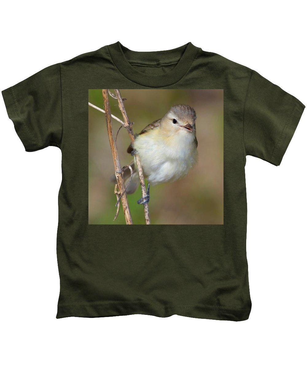 Bird Kids T-Shirt featuring the photograph Warbling Vireo by John Absher