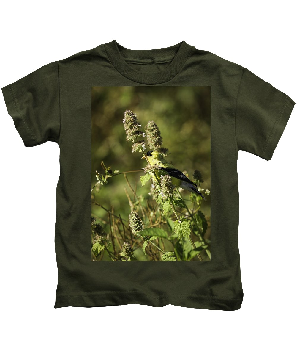 American Goldfinch Kids T-Shirt featuring the photograph Welcome To My Garden by Thomas Young