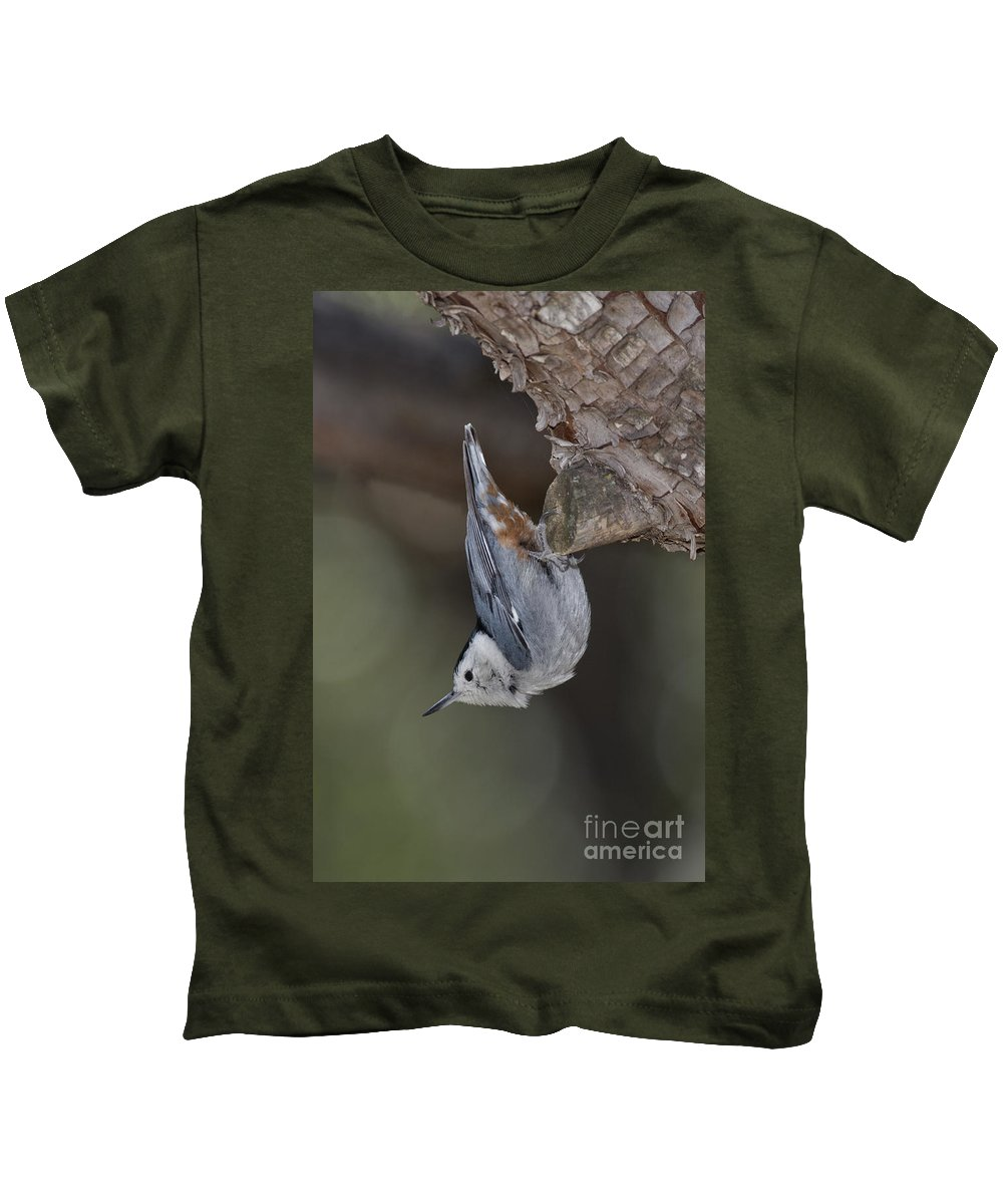 White-breasted Nuthatch Kids T-Shirt featuring the photograph White-breasted Nuthatch by Anthony Mercieca
