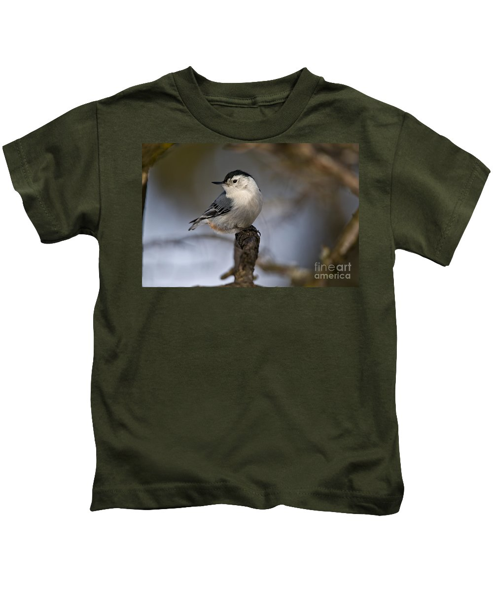White-breasted Nuthatch Kids T-Shirt featuring the photograph White-breasted Nuthatch Pictures 60 by World Wildlife Photography
