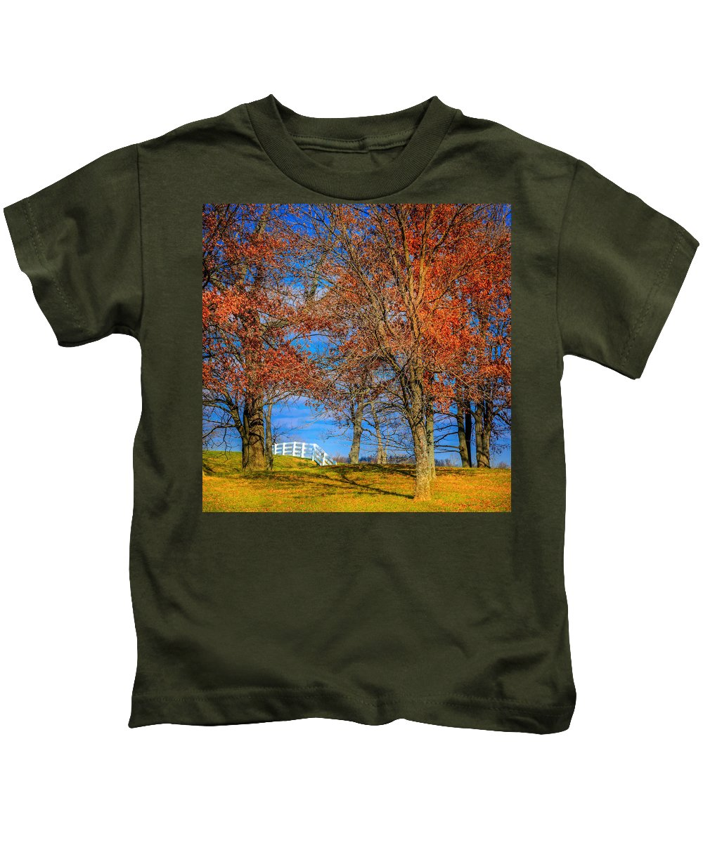 Kentucky Kids T-Shirt featuring the photograph White Fence by Alexey Stiop