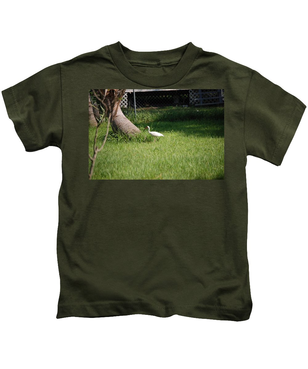 Checking Out My Backyard Kids T-Shirt featuring the photograph White Ibis by Robert Floyd
