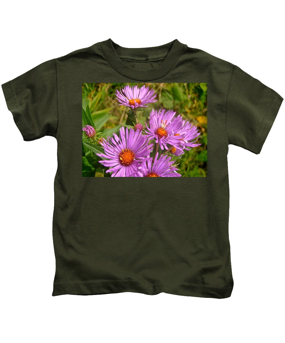 Flowers Kids T-Shirt featuring the photograph Wild Asters by Stephanie Moore