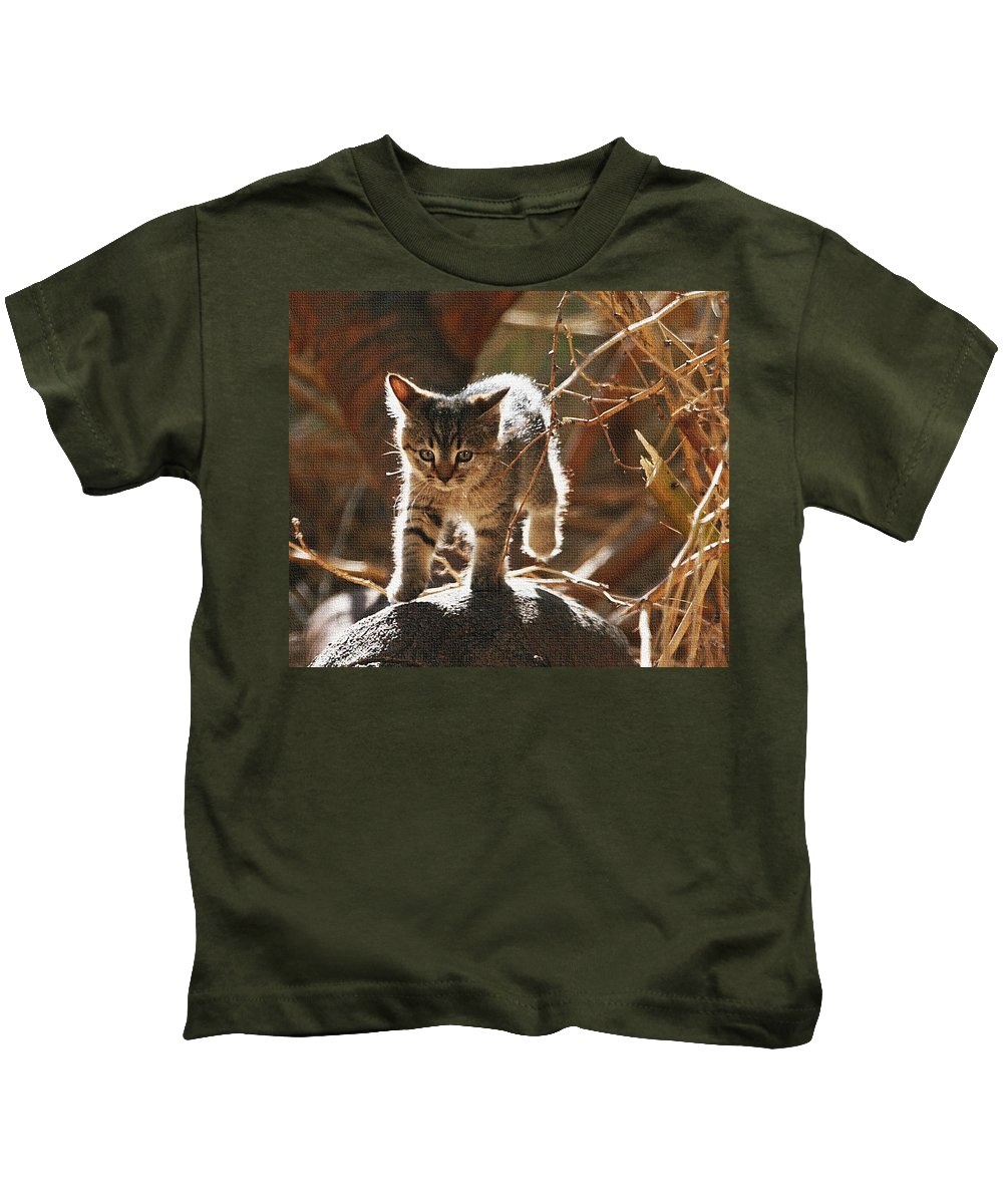 Wild Kitten Happy To Be Alive Kids T-Shirt featuring the photograph Wild Kitten Happy To Be Alive by Tom Janca