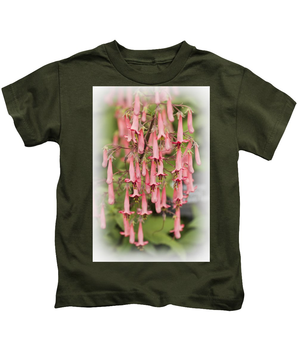 Phygelius Capensis Kids T-Shirt featuring the photograph Winchester Fanfare by Maj Seda