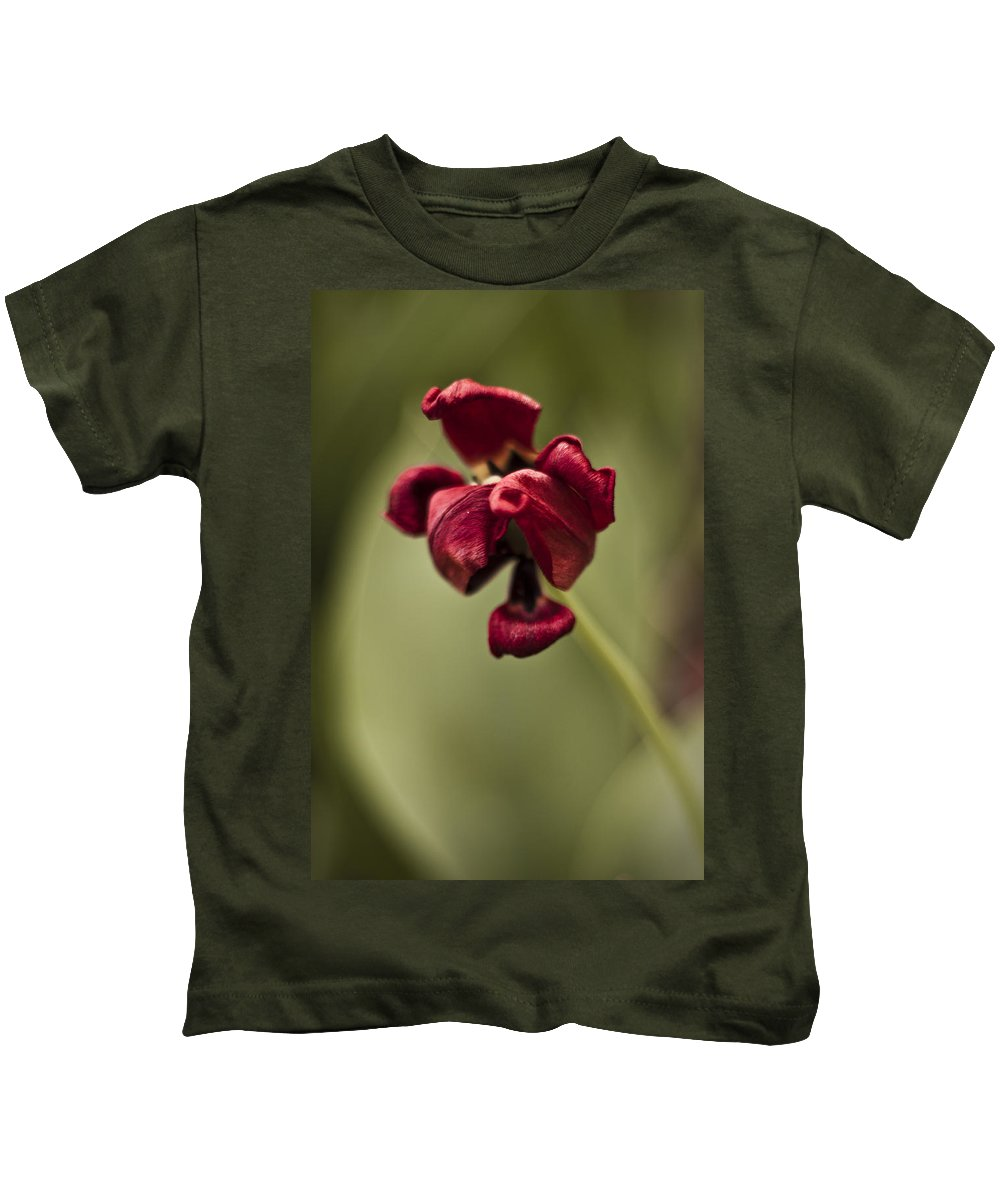 3scape Photos Kids T-Shirt featuring the photograph Withered Tulip by Adam Romanowicz