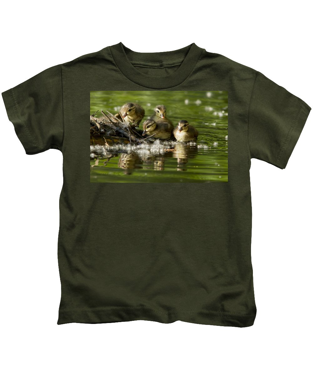 Babies Kids T-Shirt featuring the photograph Wood Duck Babies by Mircea Costina Photography