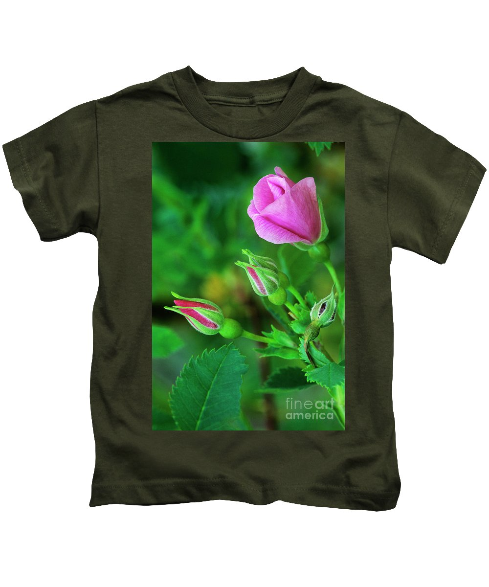 North America Kids T-Shirt featuring the photograph Wood Rose Buds Rosa Woodsii Wild by Dave Welling
