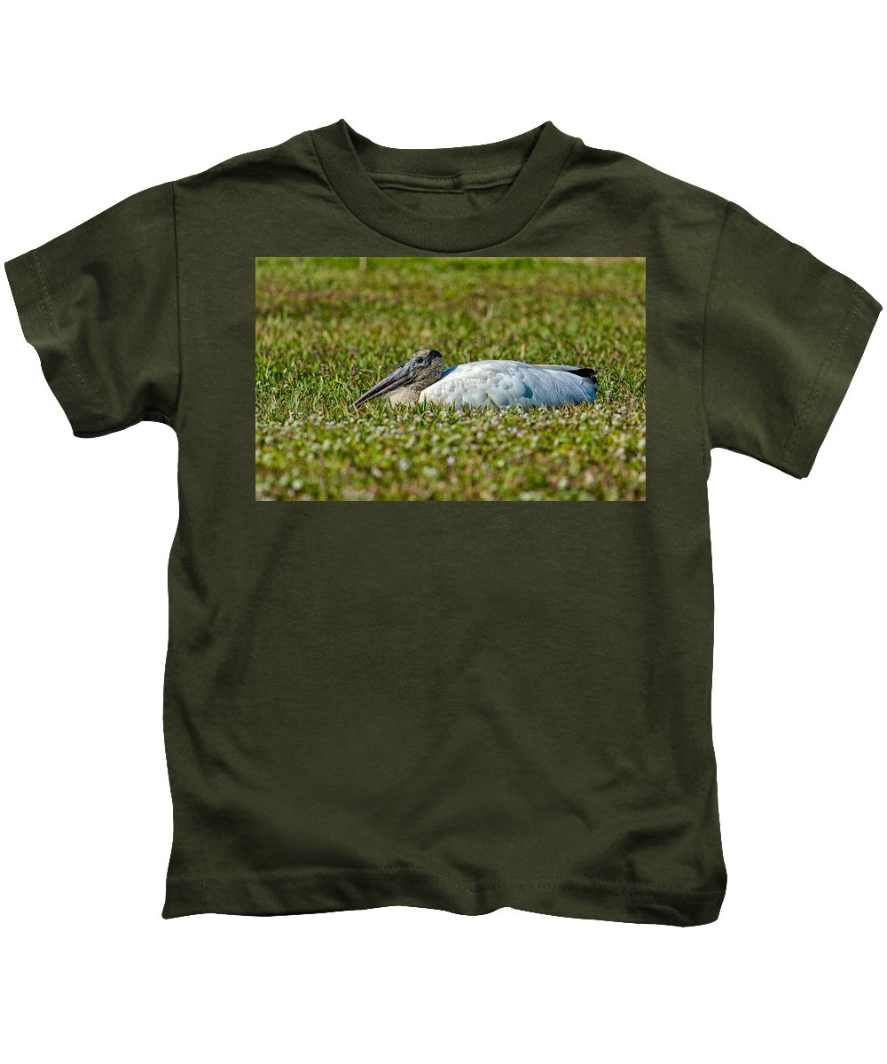 Birds Kids T-Shirt featuring the photograph Woodstork Lazing In The Park by John M Bailey