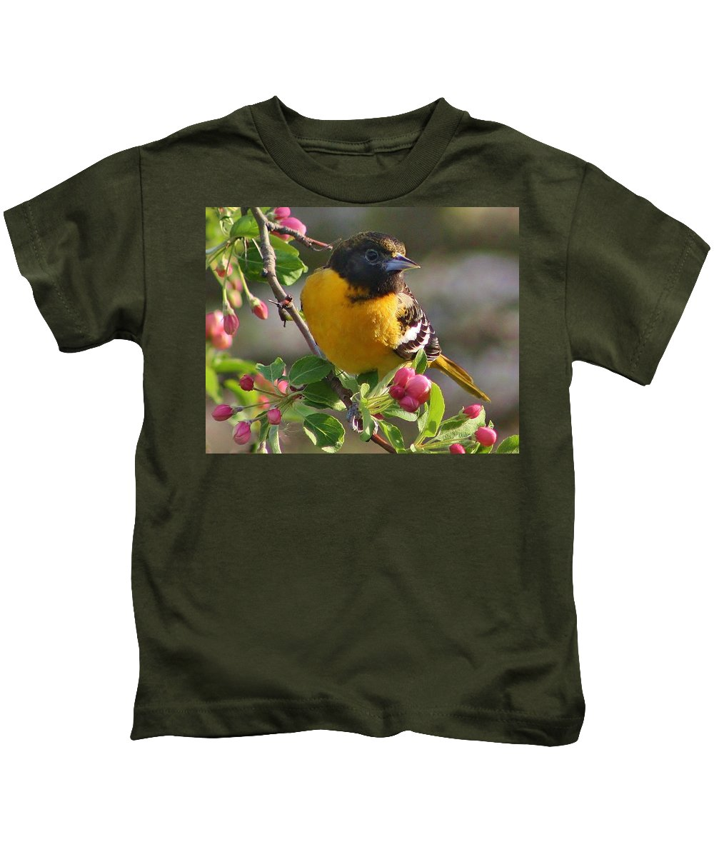 Oriole Kids T-Shirt featuring the photograph Young Male Oriole by Bruce Bley
