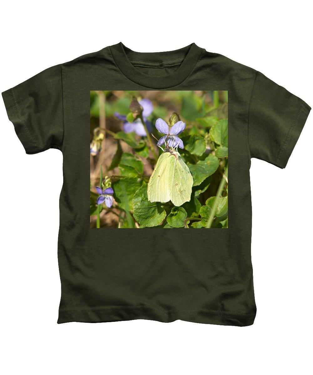 Common Brimstone. Sitruunaperhonen Kids T-Shirt featuring the photograph Common Brimstone by Jouko Lehto