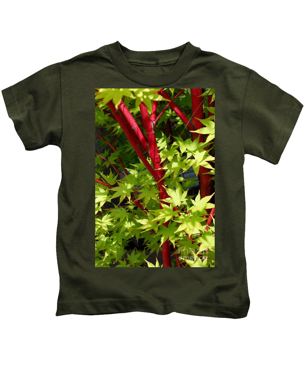 Japanese Kids T-Shirt featuring the photograph Japanese Maple Tree by Eva Kaufman