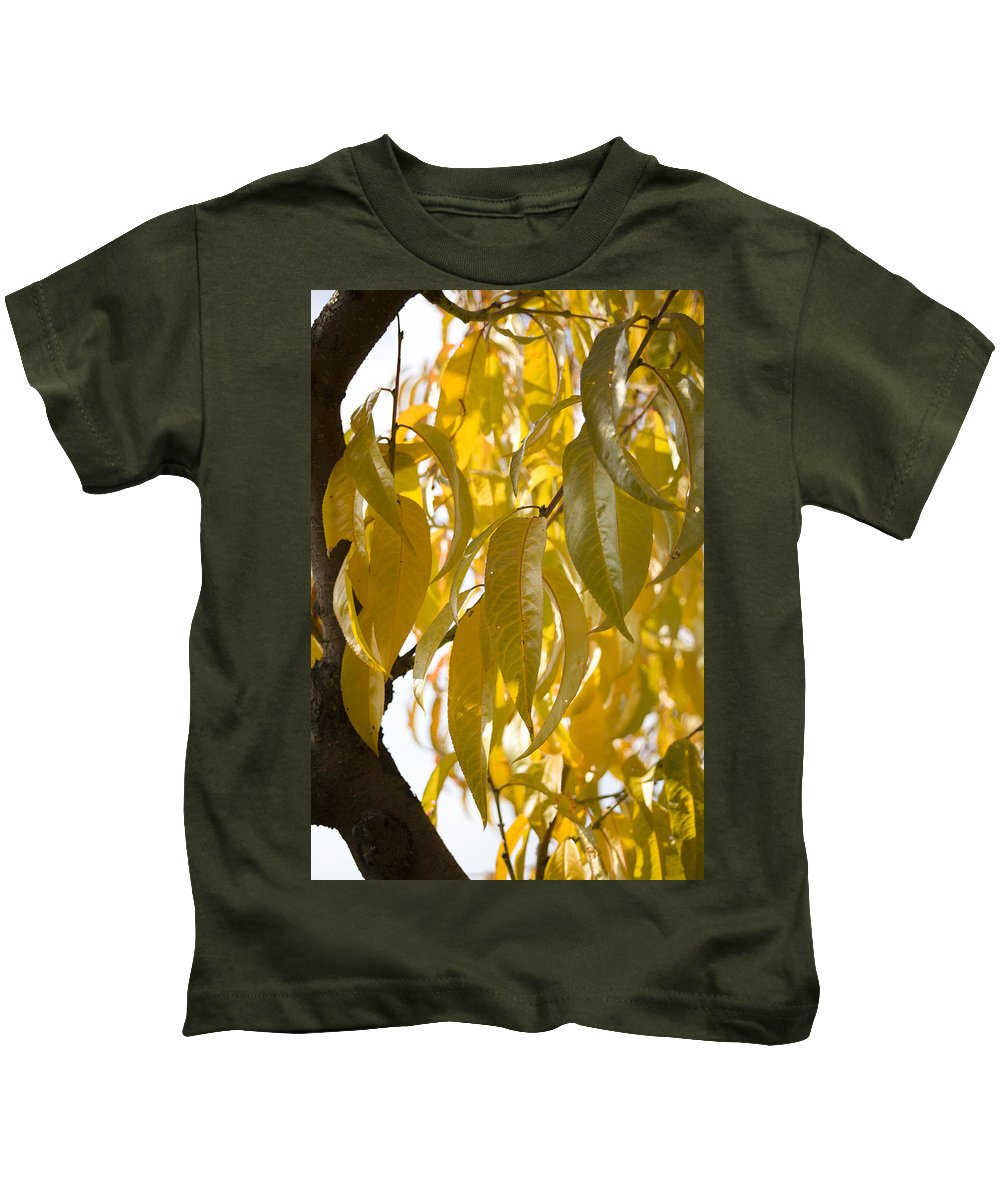 Autumn Kids T-Shirt featuring the photograph Autumn by Ian Middleton