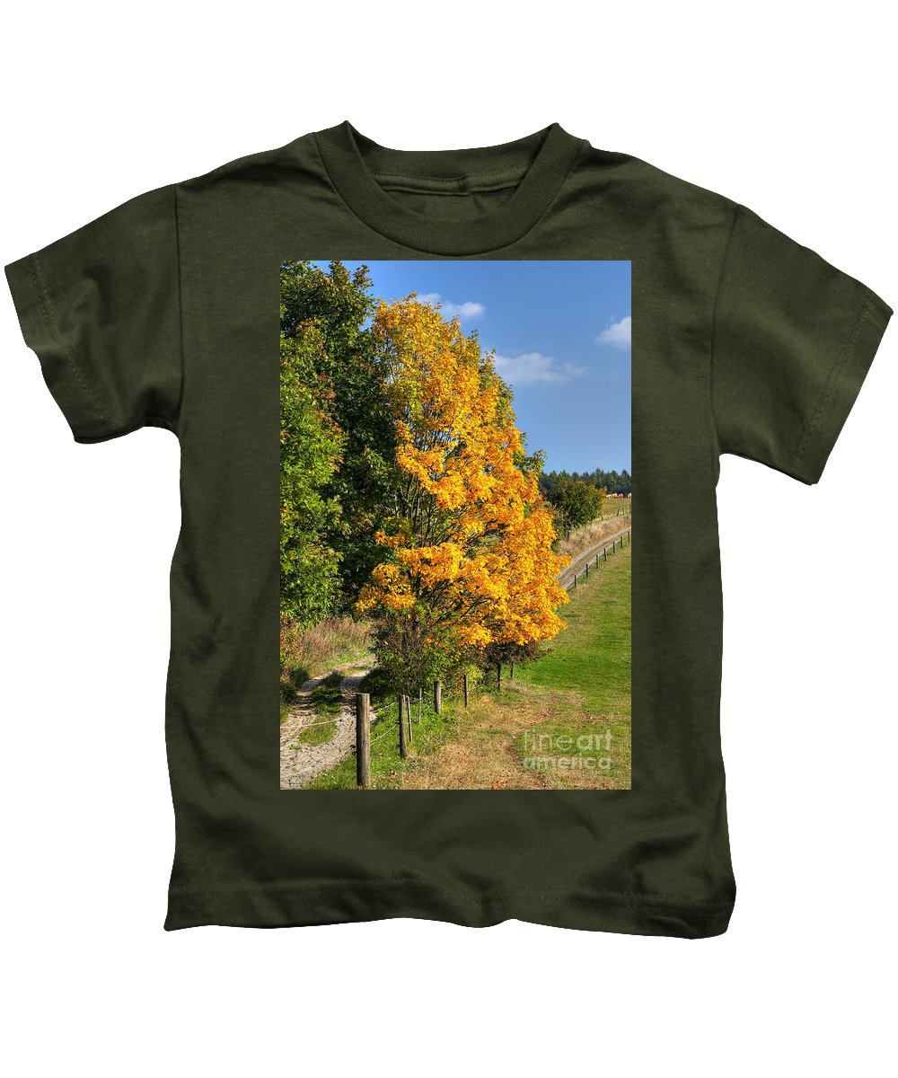 Autumn Kids T-Shirt featuring the photograph Country Road And Autumn Landscape by Michal Boubin