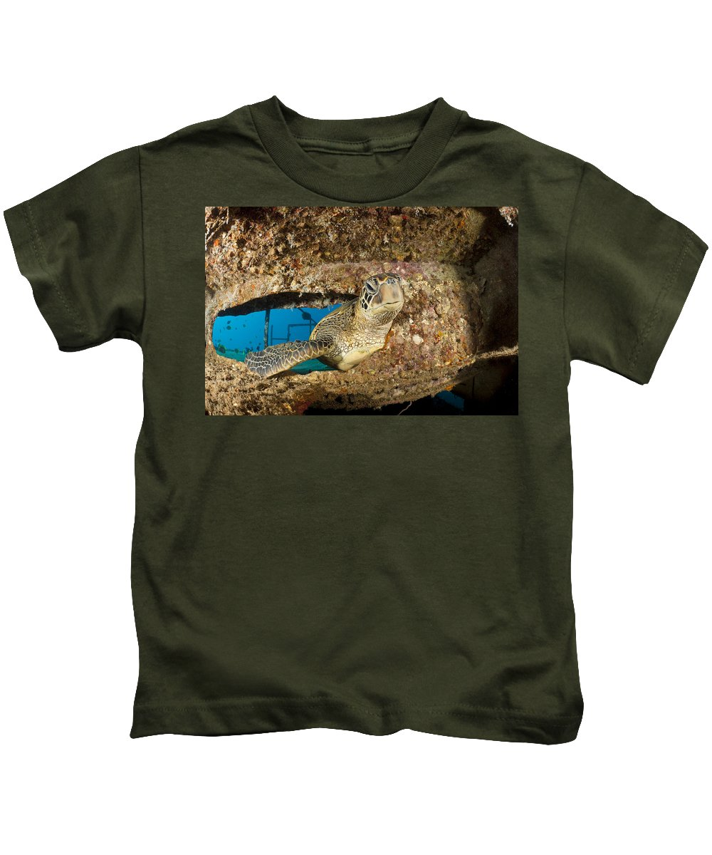 Animal Kids T-Shirt featuring the photograph Green Sea Turtle by Dave Fleetham - Printscapes