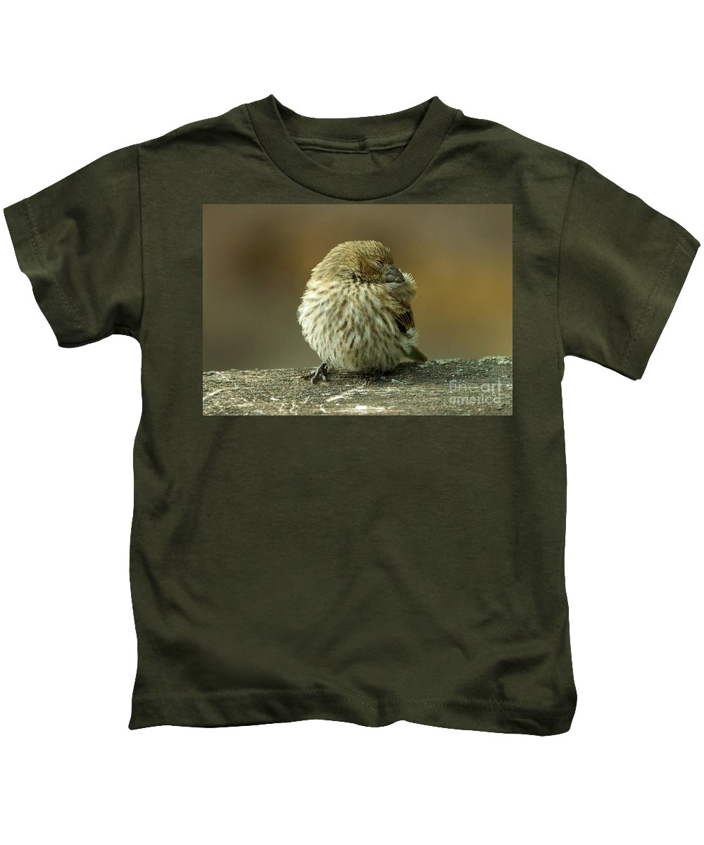 House Finch Kids T-Shirt featuring the photograph Nap Time by Lori Tordsen