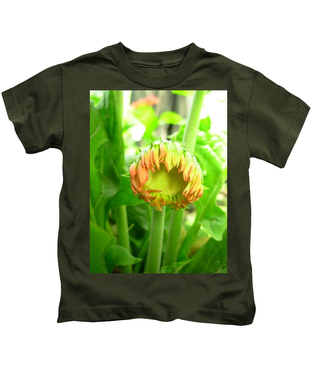 Gerbera Photographs Kids T-Shirt featuring the photograph 5352c by Kimberlie Gerner