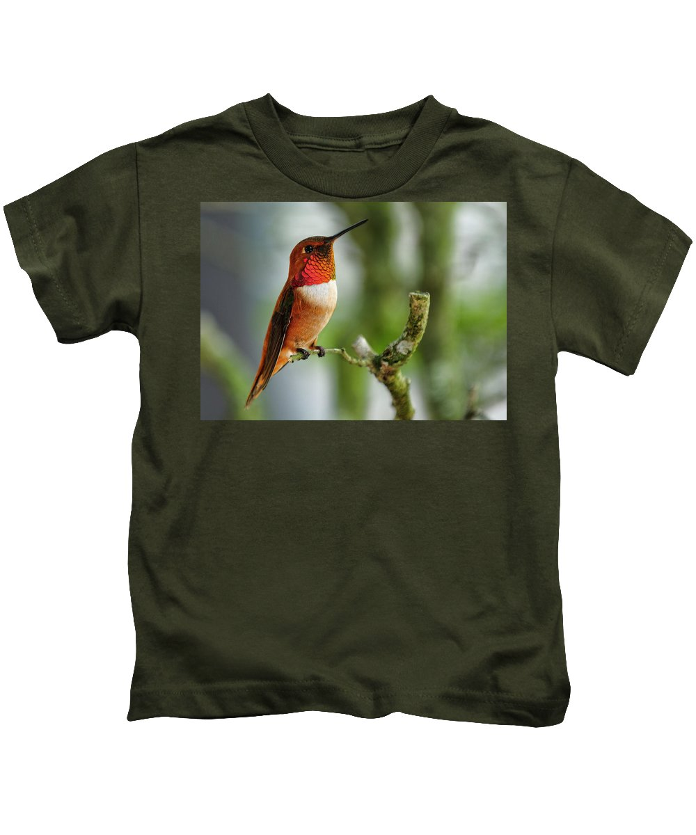 Rufous Kids T-Shirt featuring the photograph A Rufous Hummingbird Perched by Bill Dodsworth