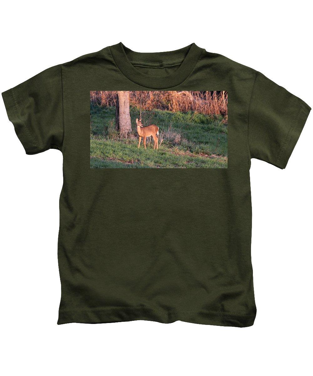 Deer Kids T-Shirt featuring the photograph Aah Baby - Deer by Travis Truelove