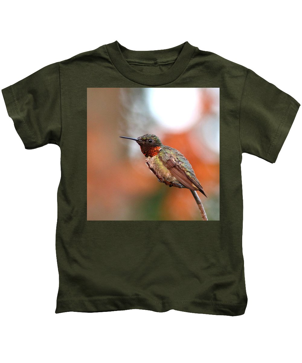 Hummingbird Kids T-Shirt featuring the photograph All In Red by Travis Truelove