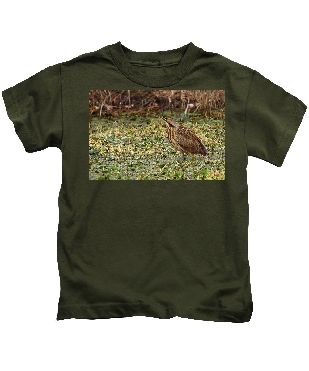 Bittern Kids T-Shirt featuring the photograph American Bittern by Bruce J Robinson