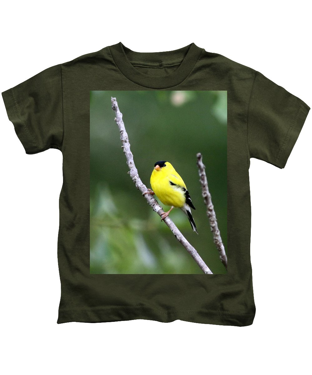 Goldfinch Kids T-Shirt featuring the photograph American Goldfinch - Single Male by Travis Truelove