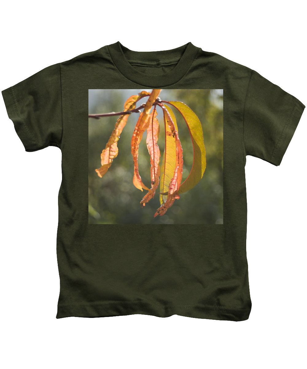 Autumn Kids T-Shirt featuring the photograph Autumn Leaves by Ian Middleton