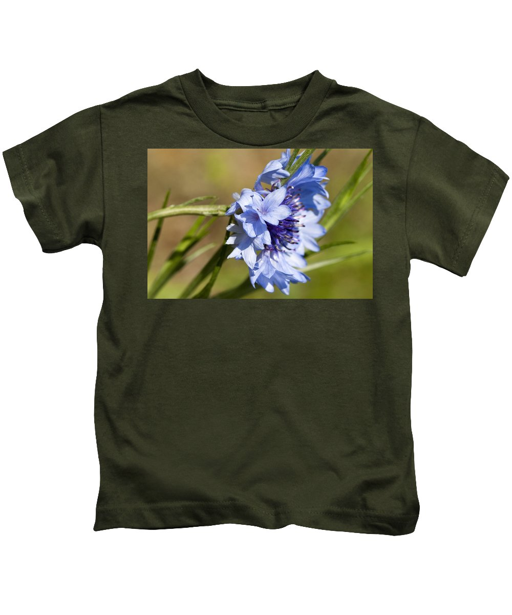 Centaurea Cyanus Kids T-Shirt featuring the photograph Bachelor Button Blowin In The Wind by Kathy Clark