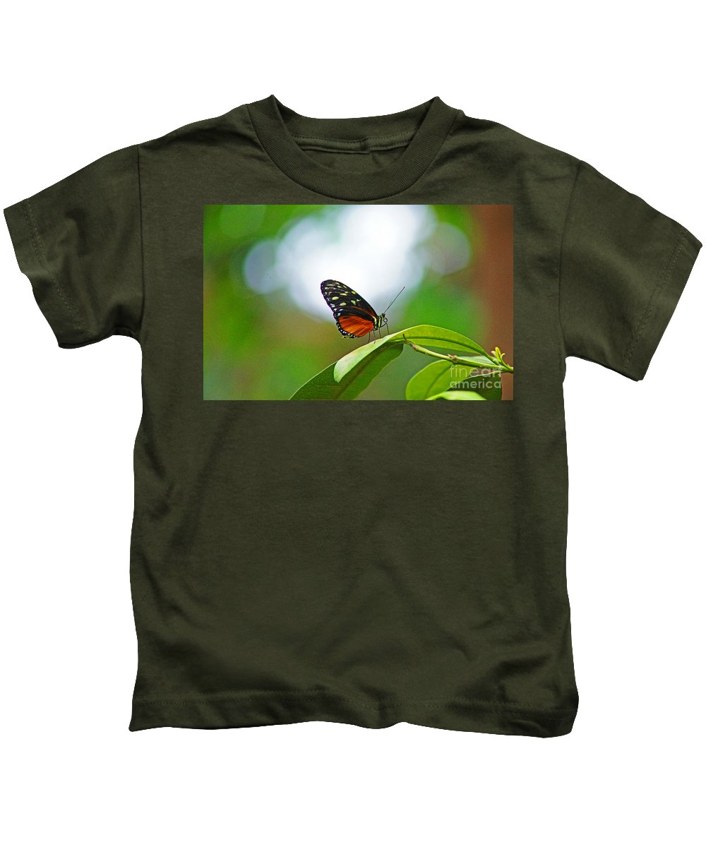 Butterfly Kids T-Shirt featuring the photograph Backlit Butterfly by Randy Harris