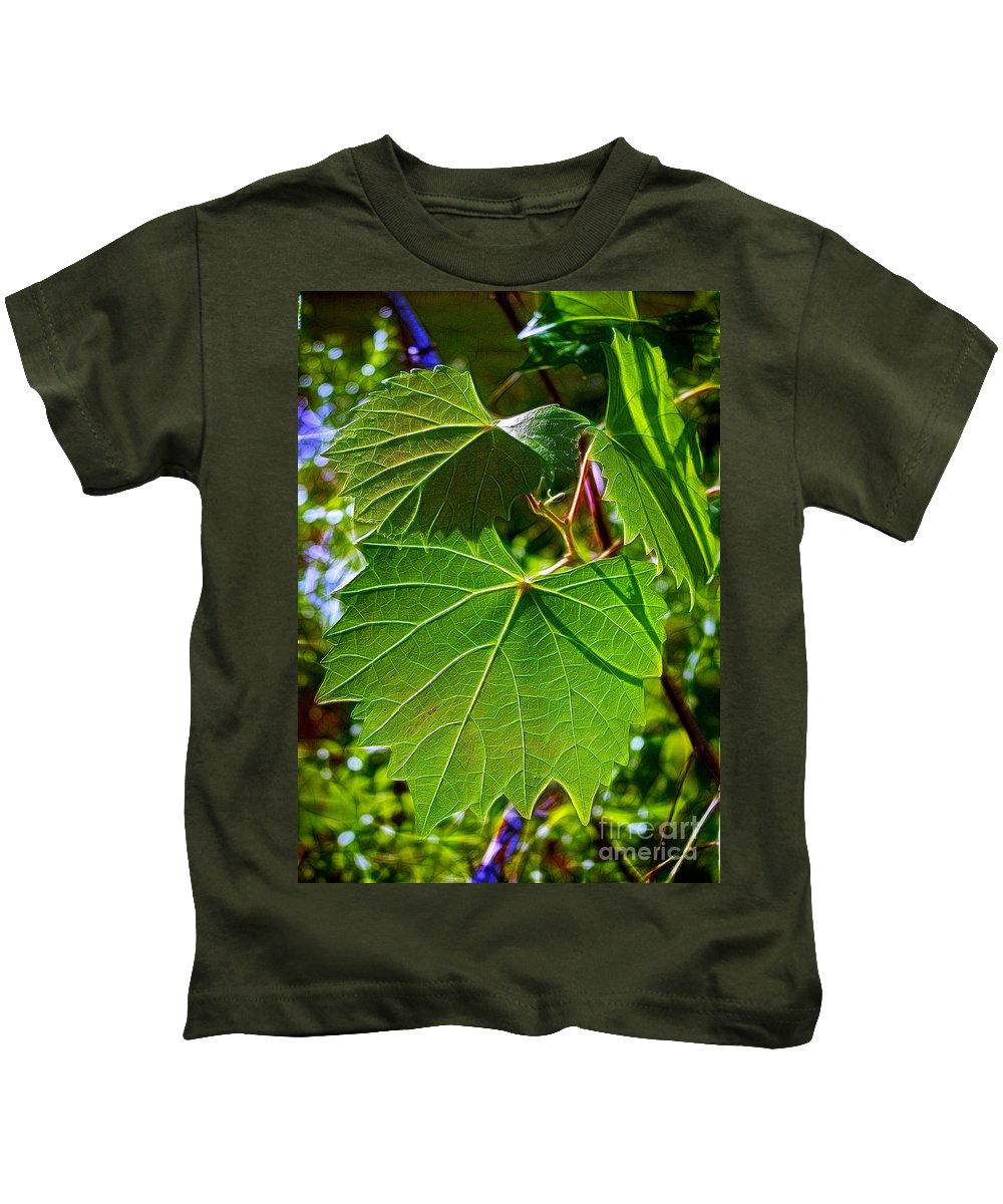 Leaves Kids T-Shirt featuring the photograph Backlit Leaves by Judi Bagwell