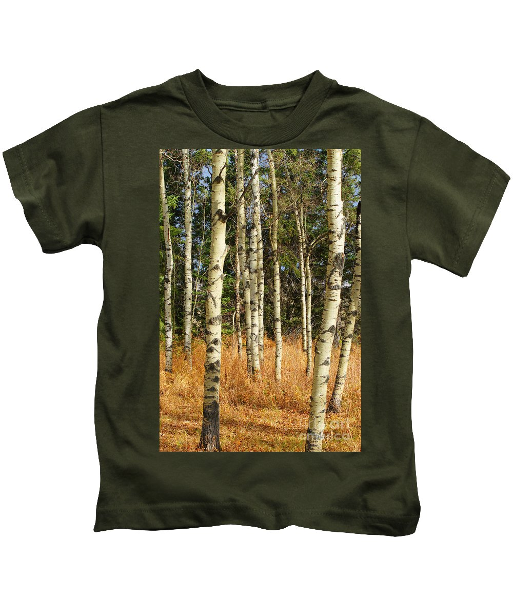 Trees Kids T-Shirt featuring the photograph Birch Tree Abstract by Randy Harris