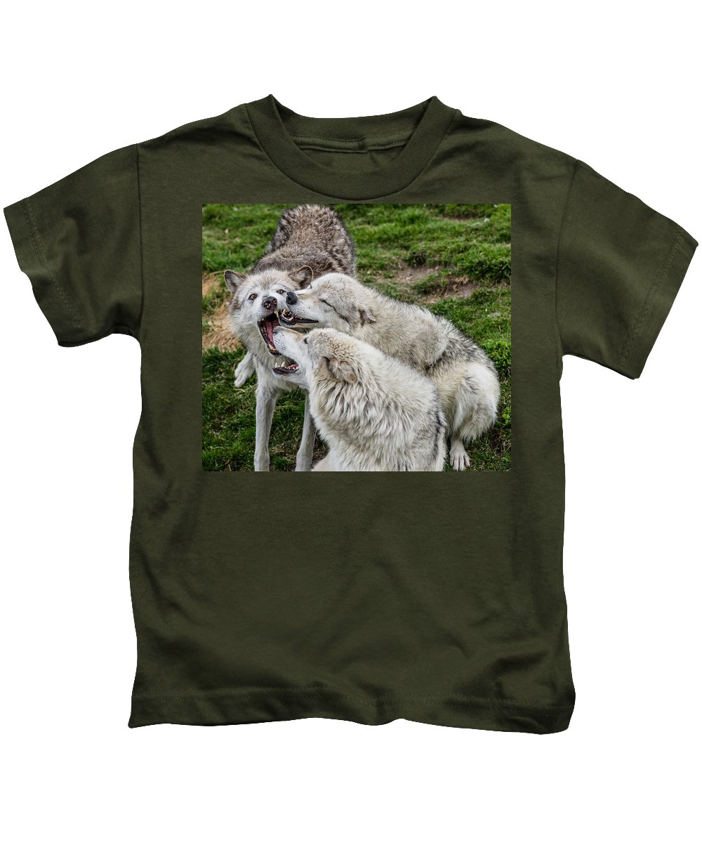 Wolf Pack Kids T-Shirt featuring the photograph Biting Festival by Greg Nyquist