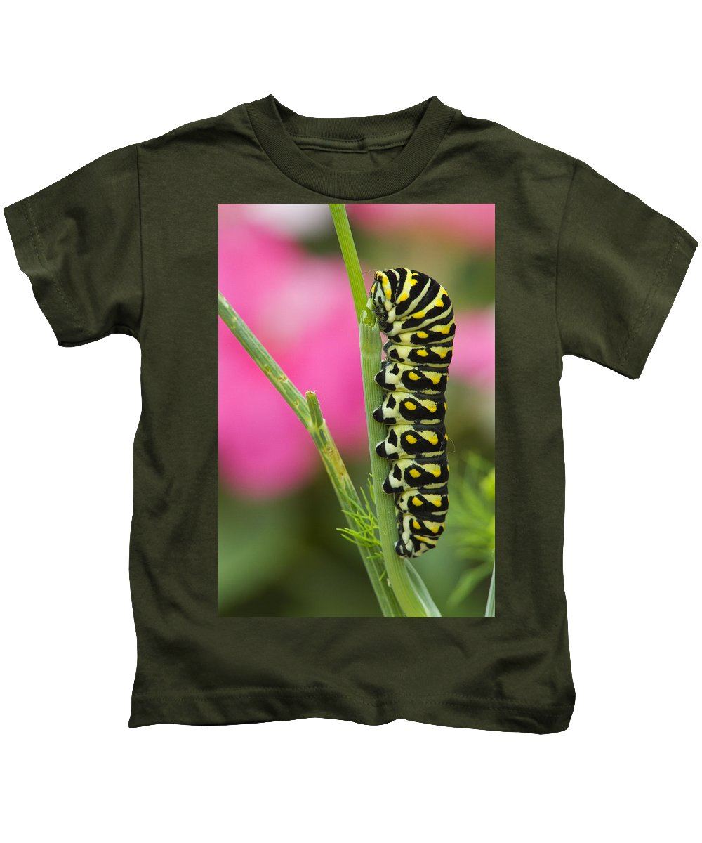 Blur Kids T-Shirt featuring the photograph Black Swallowtail Caterpillar On Garden by Mike Grandmailson