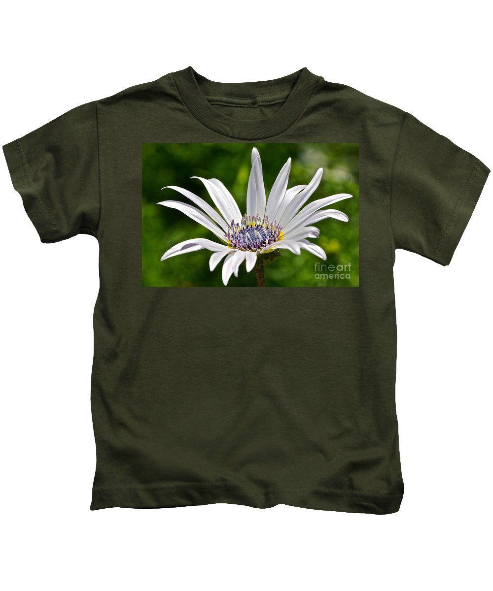 Blue Eyed Kids T-Shirt featuring the photograph Blue Eyed Daisy by Byron Varvarigos