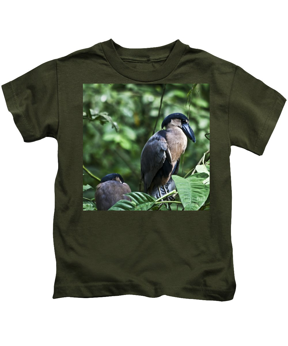 Boatbill Kids T-Shirt featuring the photograph Boatbill by Heiko Koehrer-Wagner