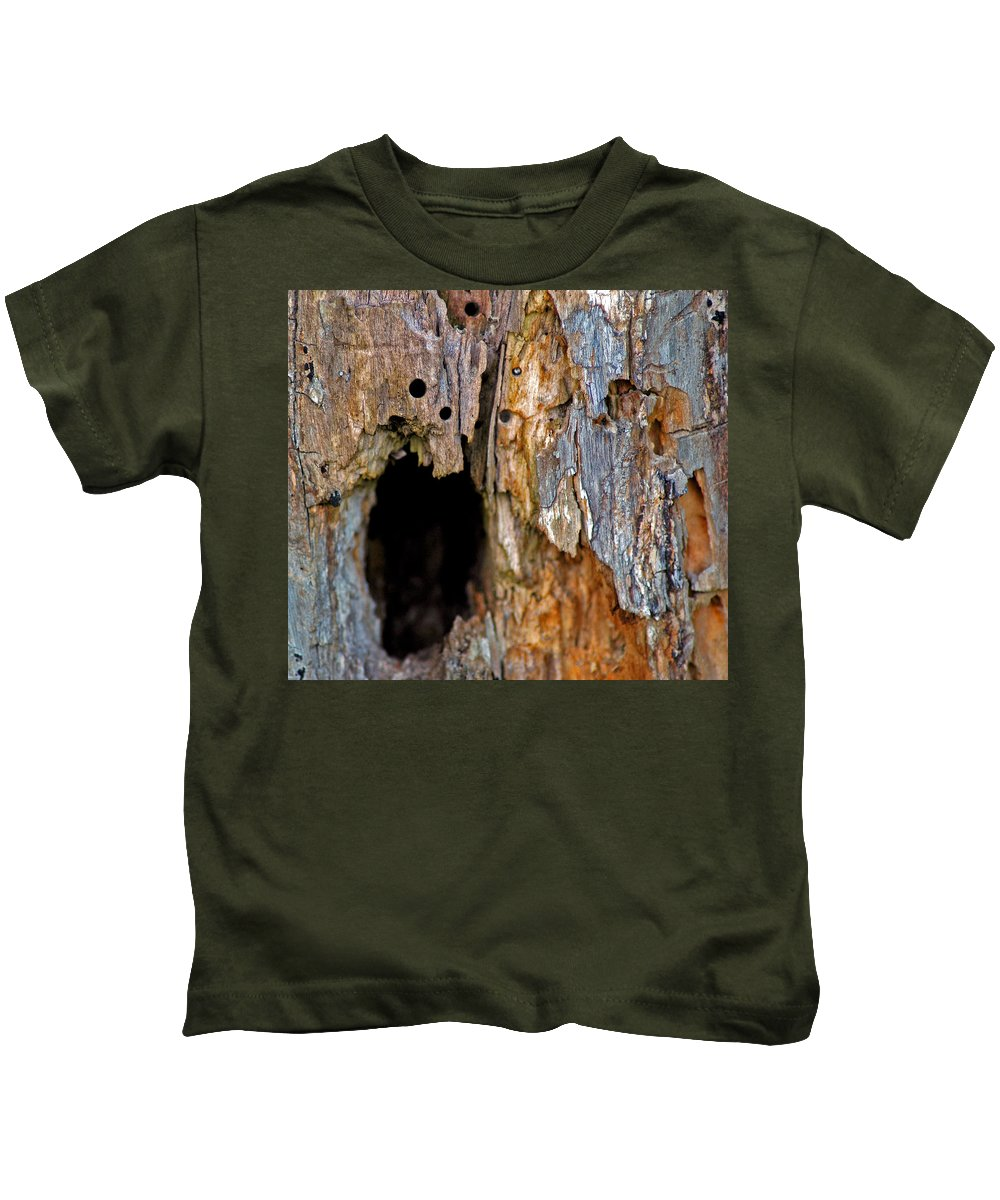 Usa Kids T-Shirt featuring the photograph Bored By Woodpeckers Feeding by LeeAnn McLaneGoetz McLaneGoetzStudioLLCcom