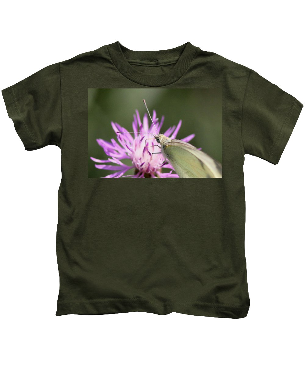 Swallowtail Butterfly Kids T-Shirt featuring the photograph Butterfly - Plain And Simple by Travis Truelove