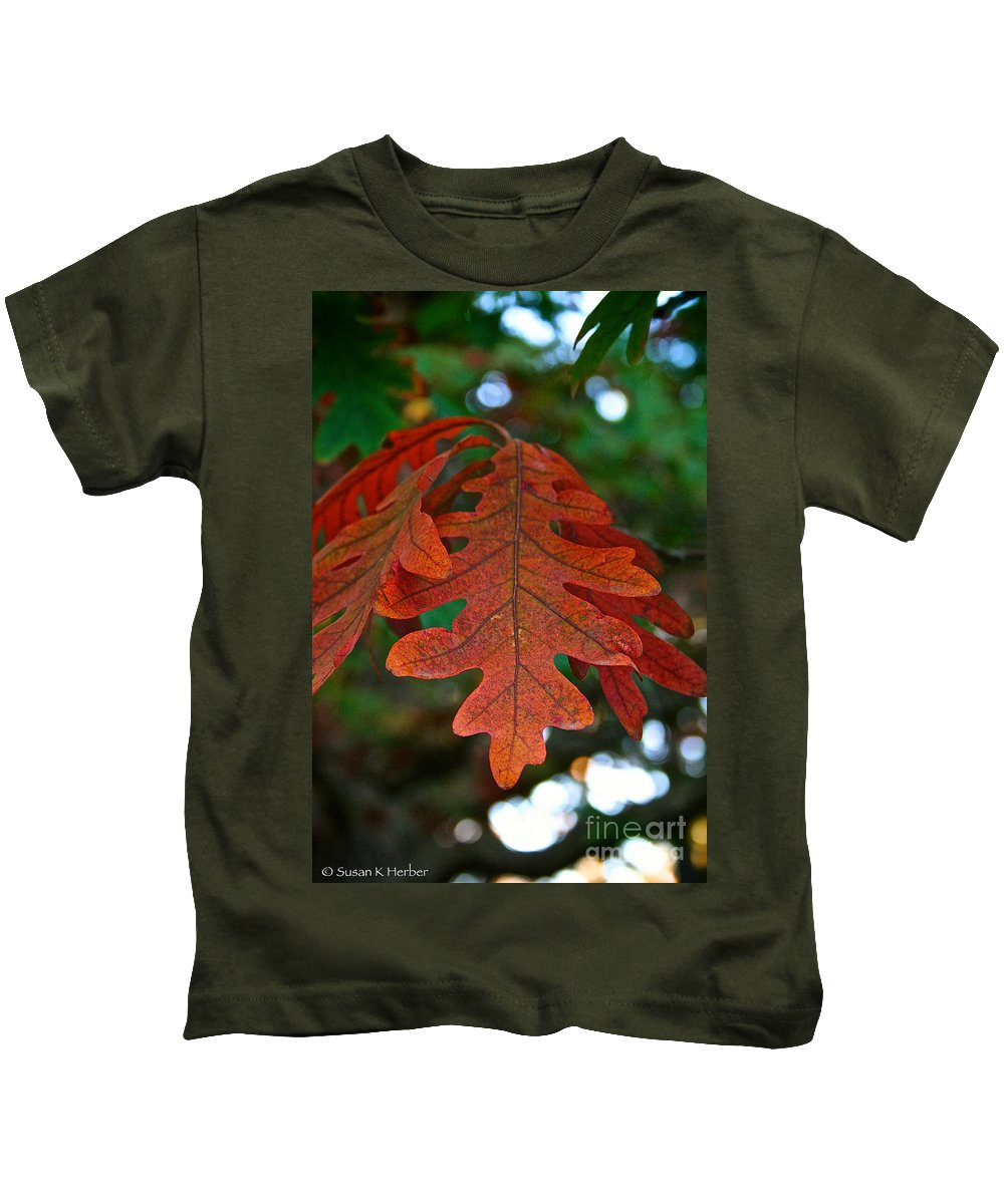 Outdoors Kids T-Shirt featuring the photograph Changing Oak by Susan Herber