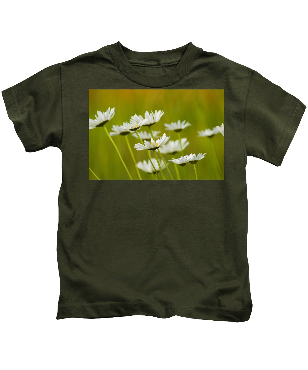 Leucanthemum Vulgare Kids T-Shirt featuring the photograph Cheerful Daisy Wildflowers Blowing In The Wind by Kathy Clark