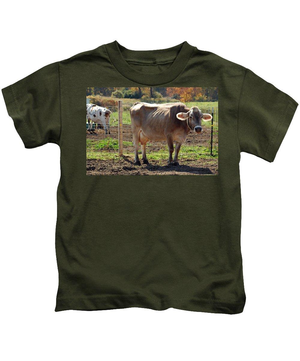 United_states Kids T-Shirt featuring the photograph Cow Shadows by LeeAnn McLaneGoetz McLaneGoetzStudioLLCcom