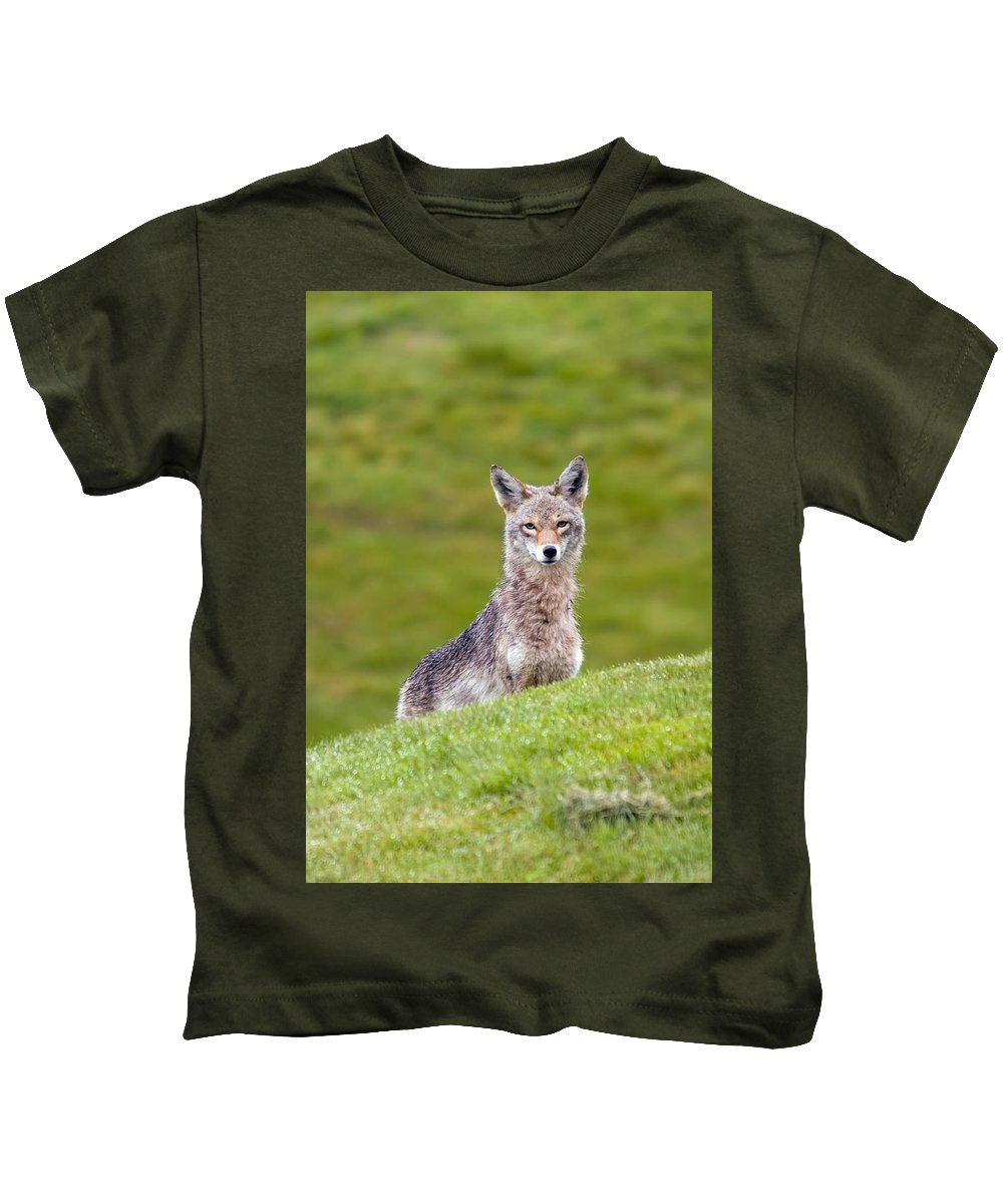 Coyote Kids T-Shirt featuring the photograph Coyote Behind The Hill by Martin Cooper