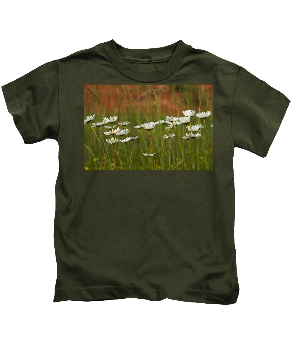 Oxeye Kids T-Shirt featuring the photograph Crazy Lazy Oxeye Daisies by Kathy Clark