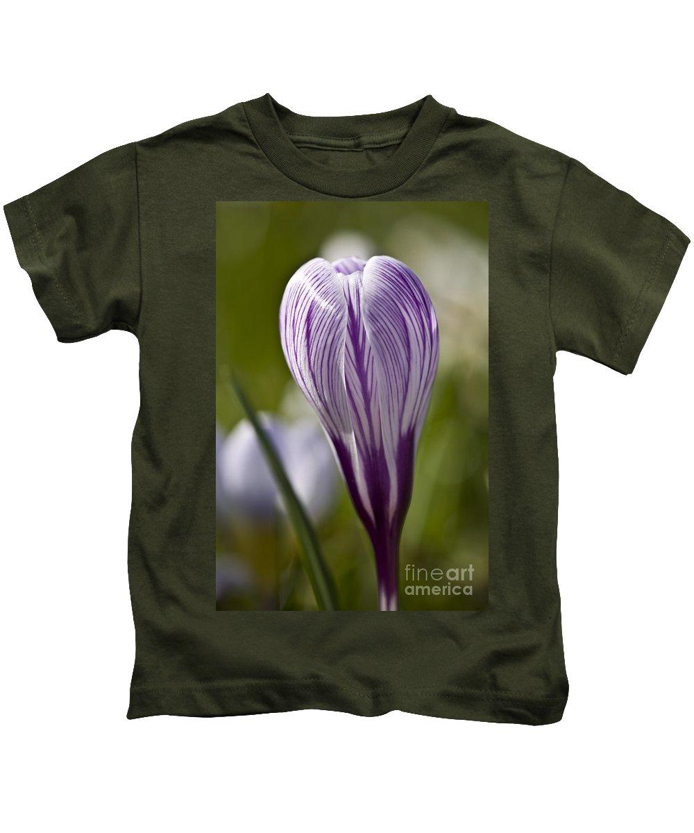 Heiko Kids T-Shirt featuring the photograph Crocus Blossom by Heiko Koehrer-Wagner