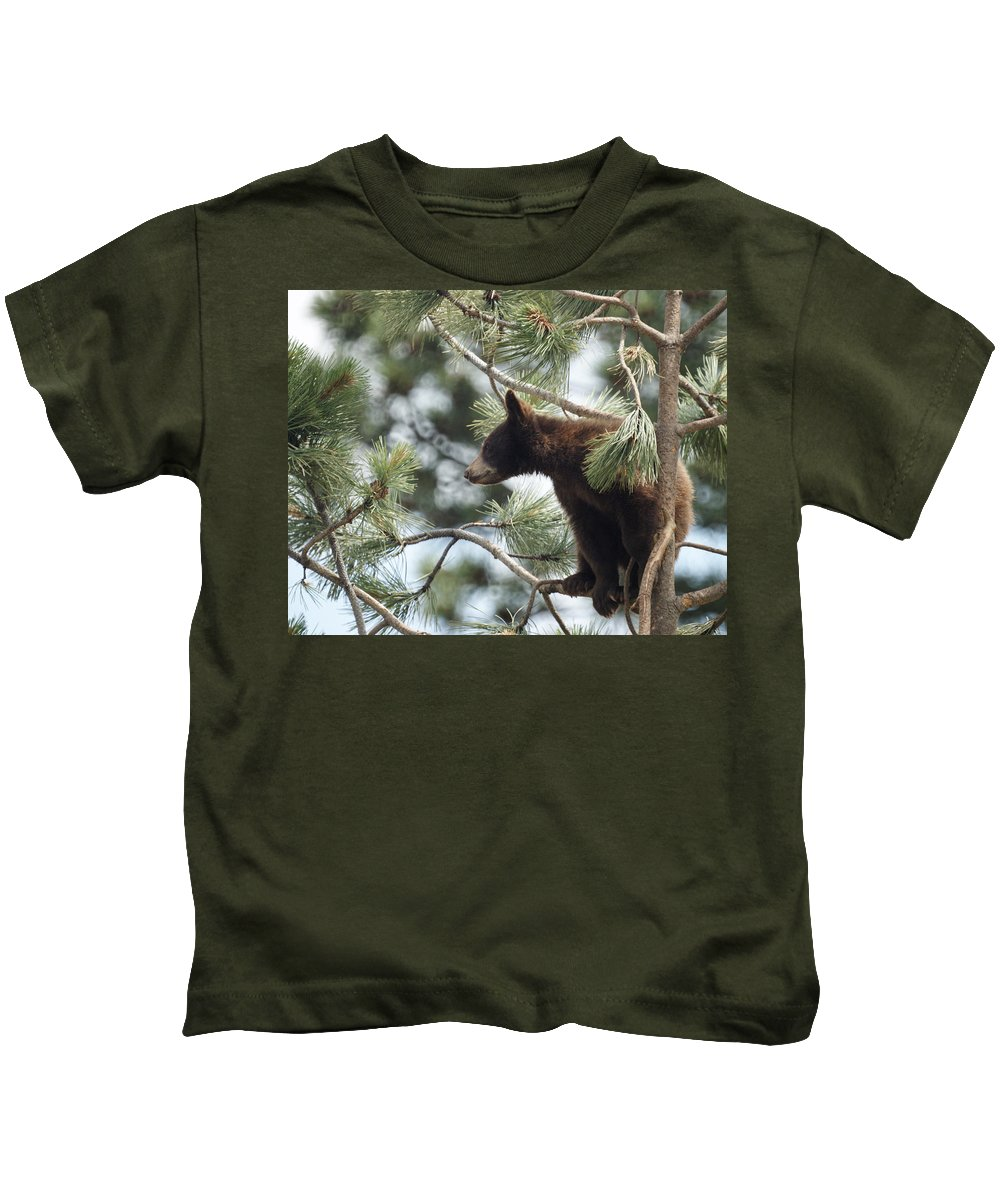 Bears Kids T-Shirt featuring the photograph Cub In Tree by Ernie Echols