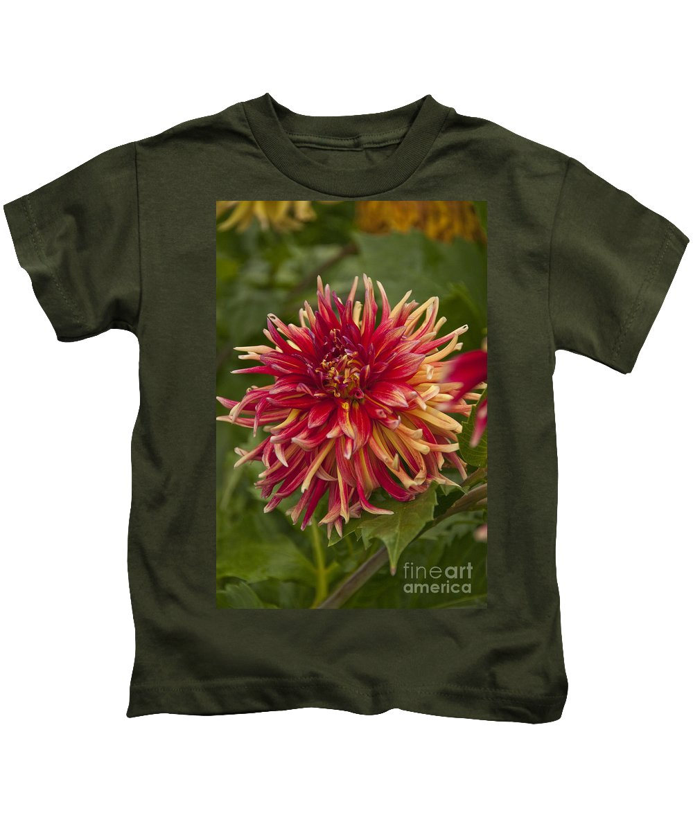 Red Kids T-Shirt featuring the photograph Dahlia In Its Prime by Davina Parypa