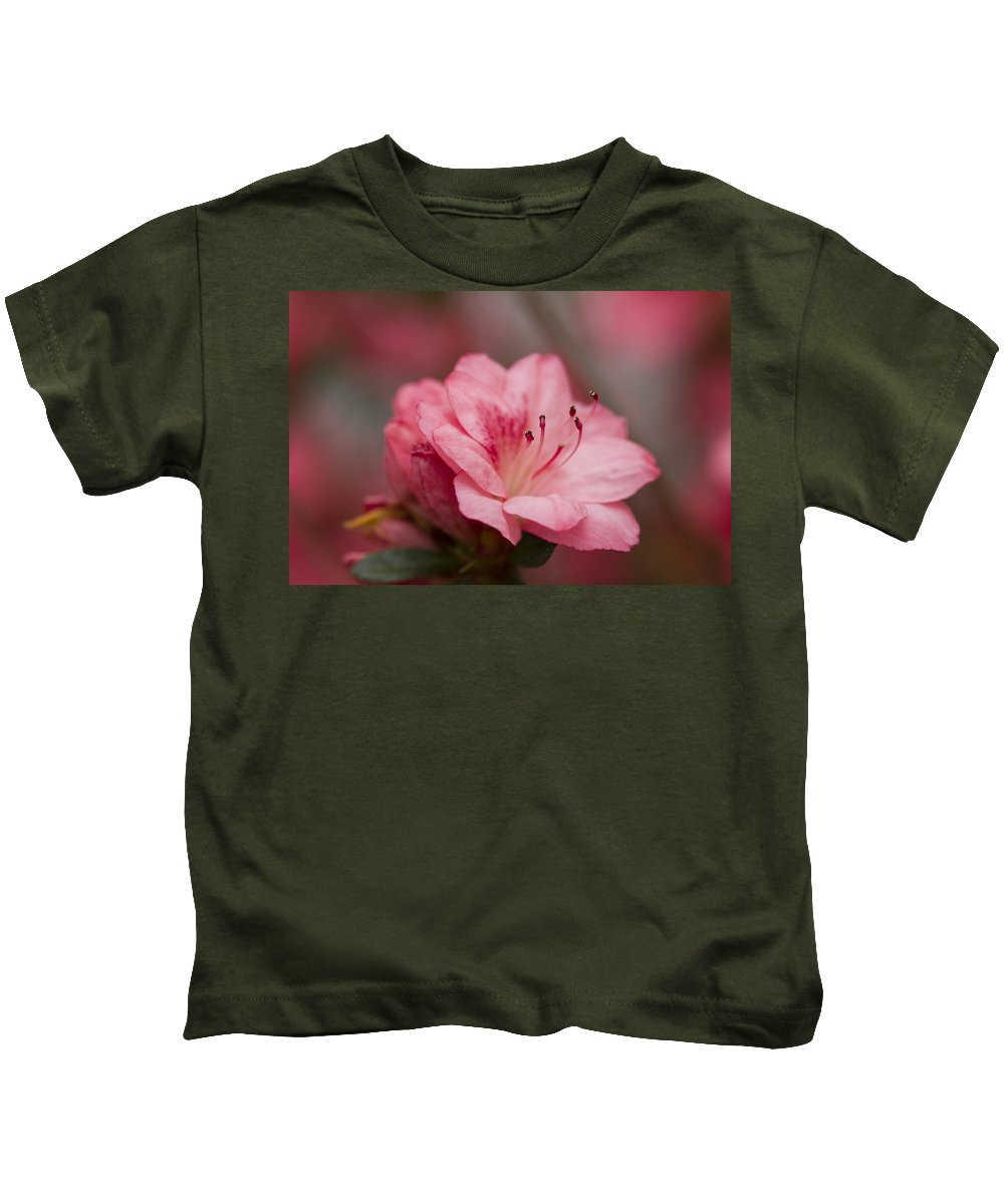 Azalea Kids T-Shirt featuring the photograph Delicate Pink Azalea by Kathy Clark