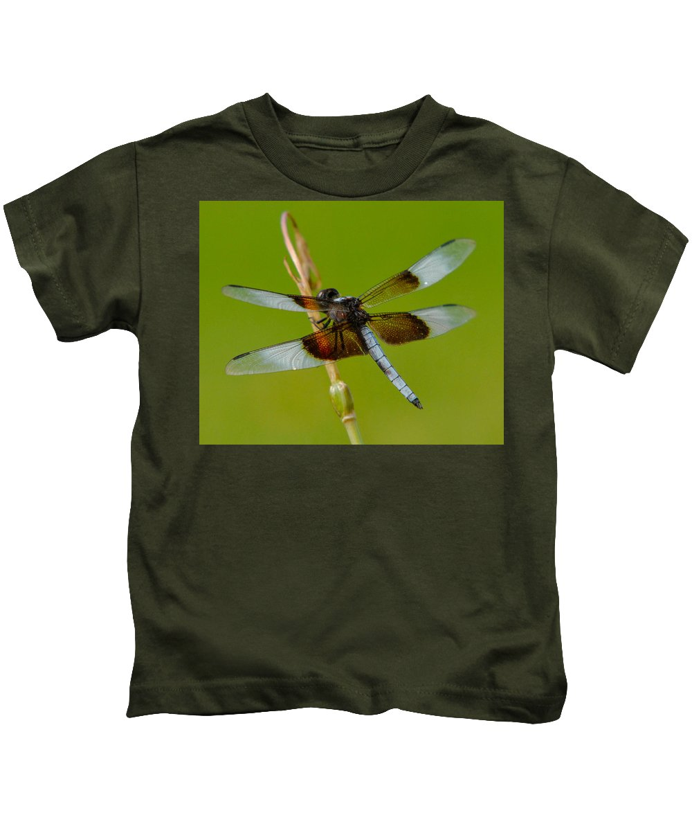 Bug Kids T-Shirt featuring the photograph Dragon Fly Green by Sean Wray